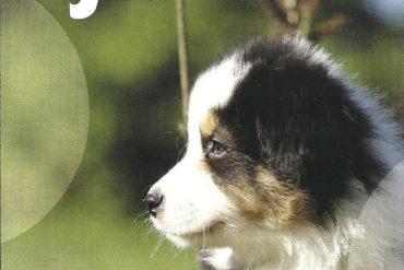 CRECIENDO JUNTOS – Royal Canin